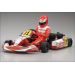 Racing Kart Birel R31-SE 1/5 Ready Set - 31315T1