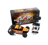 Desert CAGE BUGGY GT10DT 1-10e Brushless RTR Carisma