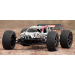 TROPHY TRUGGY 4.6 2.4 GHZ RTR - HPI - 8700107014