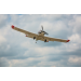 Pawnee Brave Night Flyer BNF Basic E-flite®