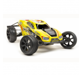 Voiture RC T2M  Pirate Puncher 1/10 - T2M-T4922