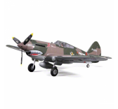 Warbird RC FMS Flying Tiger P-40B 980mm PNP  - FMS075C